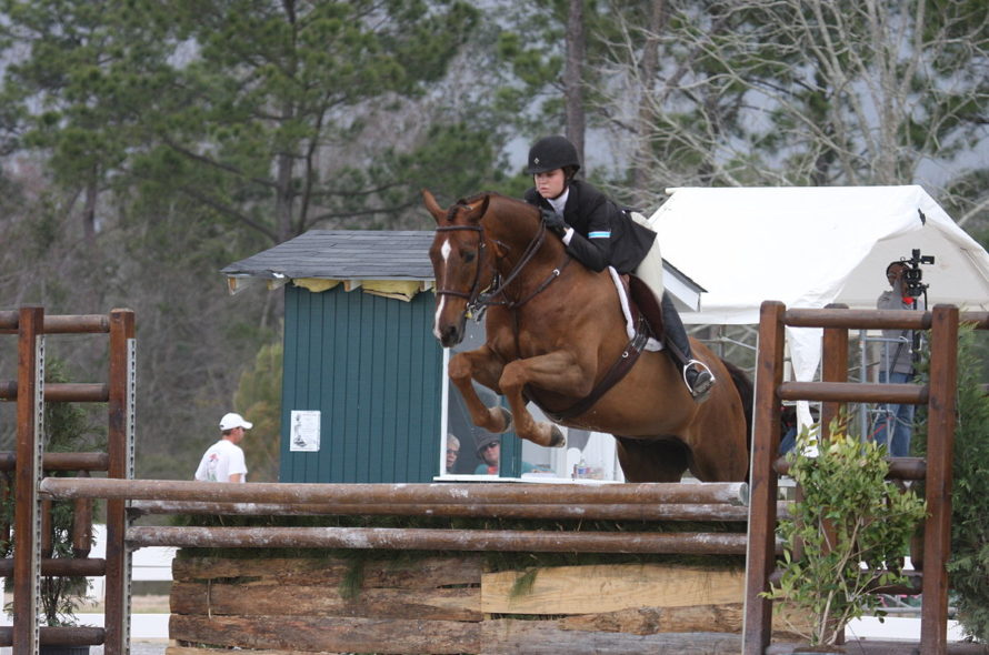 The Aspect Of Risk Management In A Horse Hunting Competition